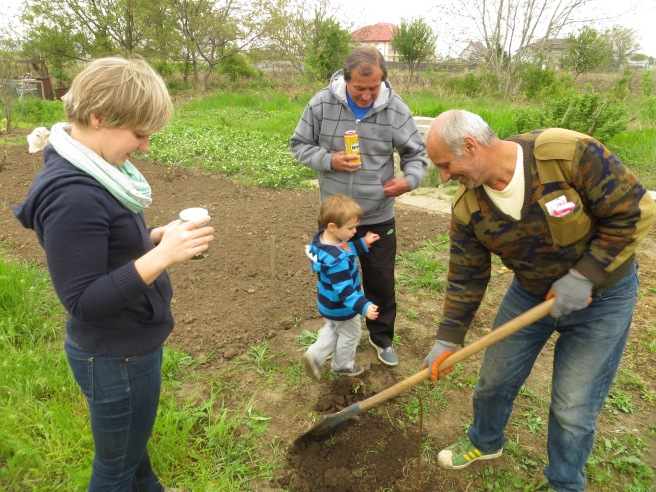 Tavi, Gigi (my father-in-law), Sile (neighbor) and I digging for the Romanian tarantula